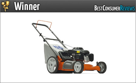 Turf Management best buy pay grade