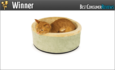 catbeds1
