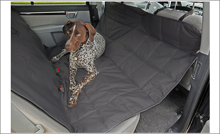 2018 Best Pet Car Seat Covers Reviews